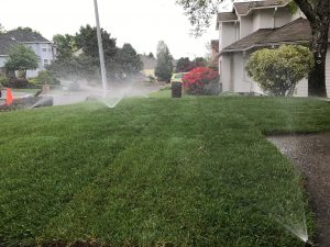 Lawn Irrigation Systems